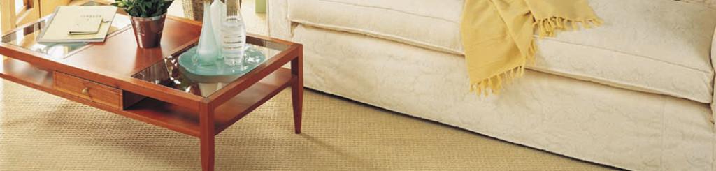 Carpet-Fitting-Banner