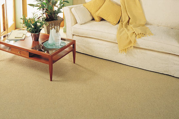 Range-Carpet