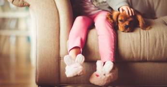 laminate flooring for dogs